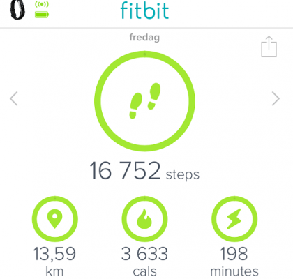 Fitbit - Dashboard